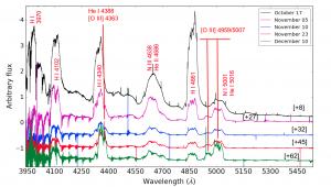 A sample of the SALT high resolution spectroscopy